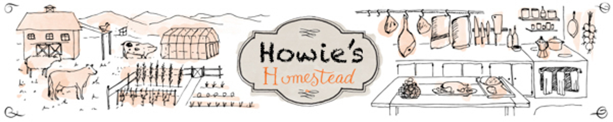 Howies Homestead - An Engineer's View of Homesteading and Getting off the Grid