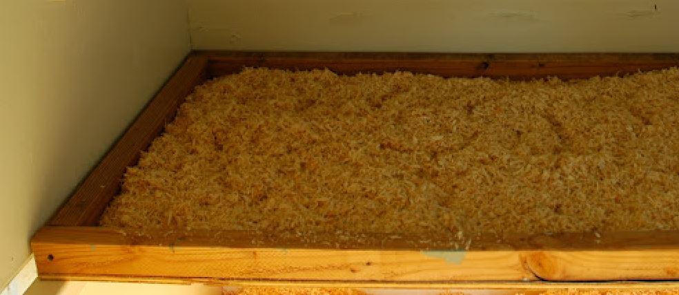 poop tray2